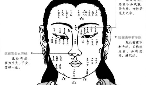 Facereading Points.png